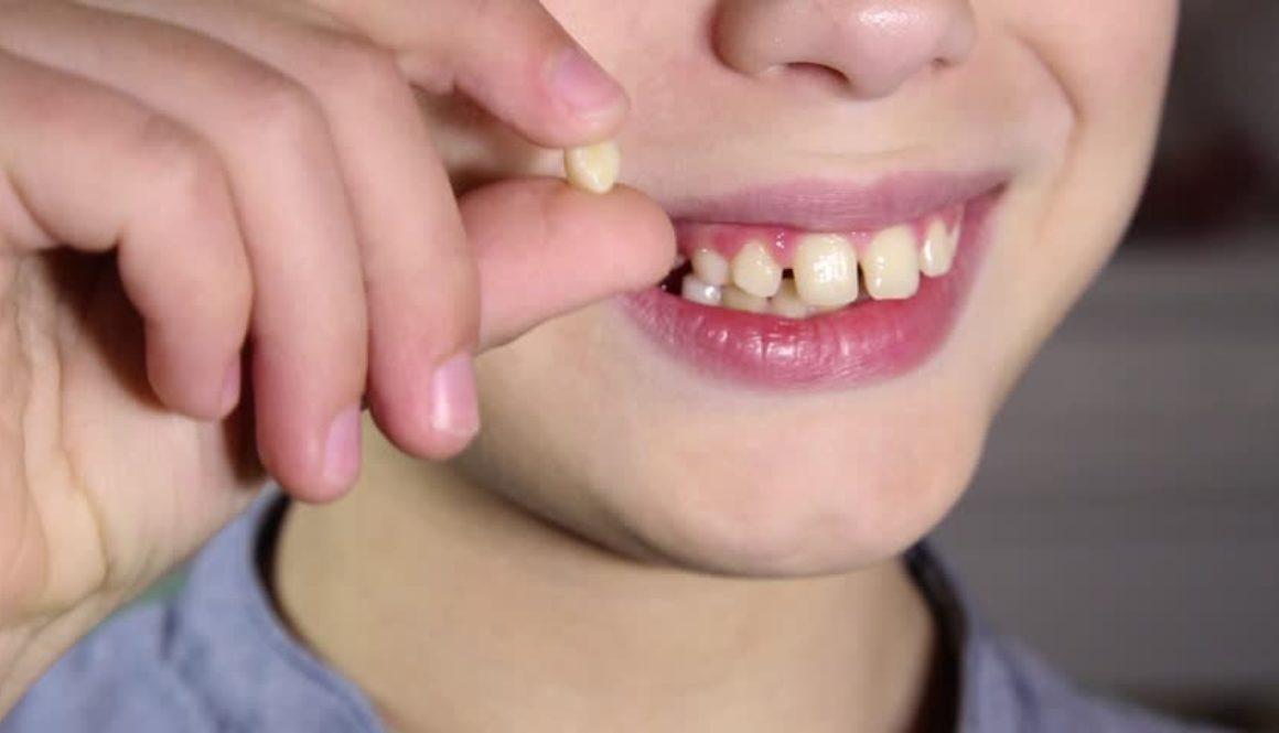 calendario dentizione